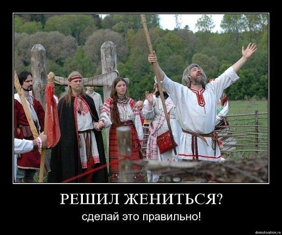 Просмотр приколов с животными и ...: smotrimtut.info/prikoly/14015-prosmotr-prikolov-s-zhivotnymi-i...